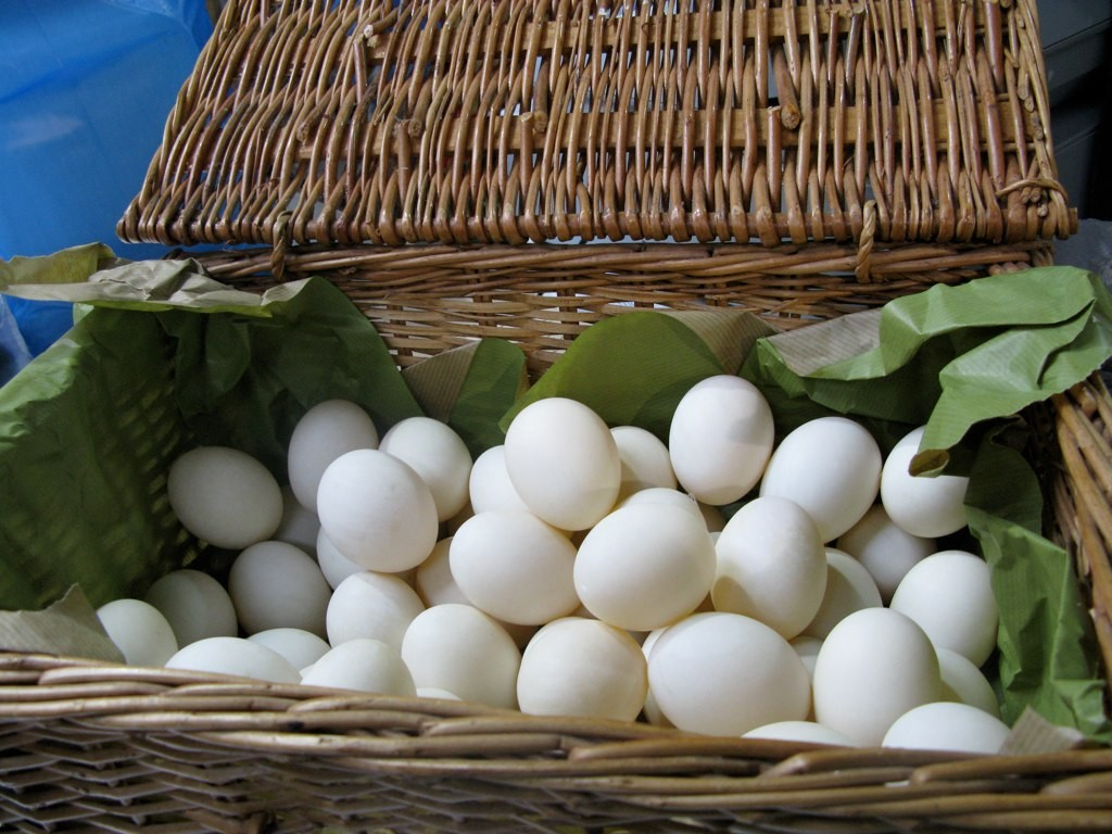 Photo of eggs in a basket