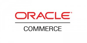 Oracle ATG Commerce SEO Advice