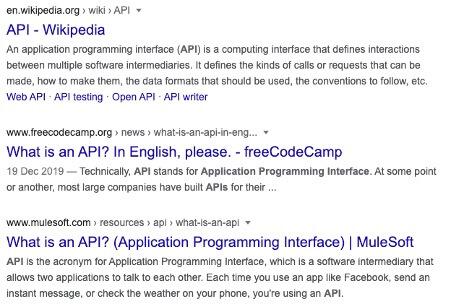 API SERP Screenshot